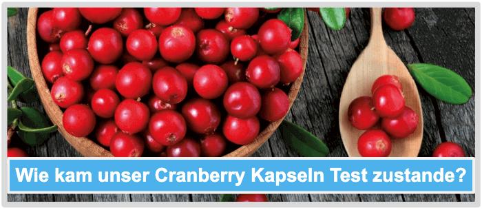 Wie kam unser Cranberry Kapseln Test zustande