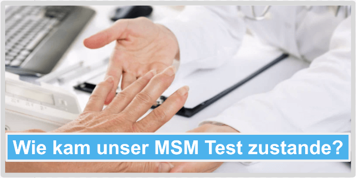 Wie kam unser MSM Test zustande