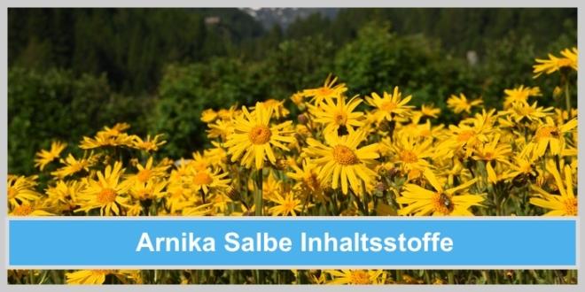 Welche Inhaltsstoffe stecken in Arnika Salbe?