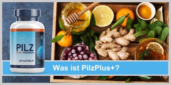 pilz plus obst ingwer orangen immunsystem honig
